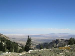campsite view.02